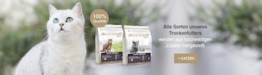 Getreidefreies Trockenfutter für Katzen