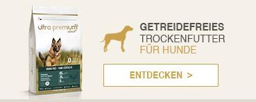 Getreidefreies Trockenfutter für Hunde